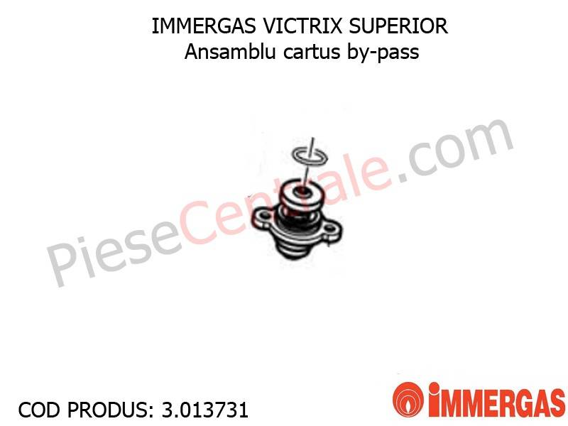 Poza Ansamblu cartus by-pass centrala termica Immergas Victrix Superior